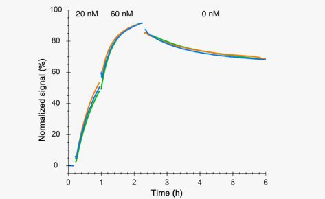 Insights: Affinity and kinetics